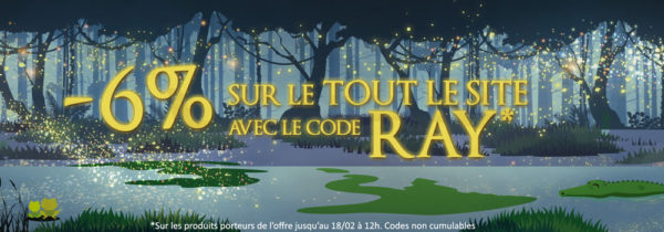 Top Achat Réductions 18fev20 Ray