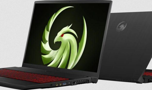 "MSI Bravo 17, PC portable 17"" 120Hz gamer Ryzen 7 4800H Renoir Octo Core et Radeon RX 5500M"