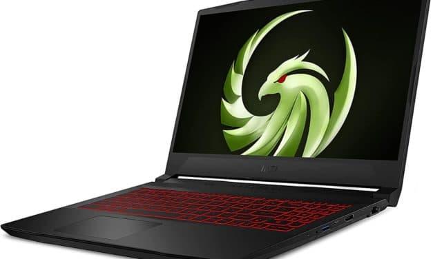 "MSI Bravo 15 B5D, PC portable 15"" 144Hz polyvalent AMD Ryzen 5000H Cezanne et AMD Radeon Navi"
